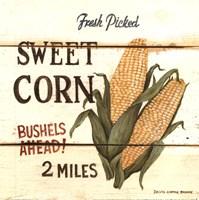 Fresh Picked Sweet Corn Framed Print