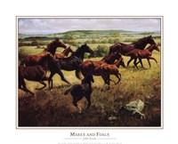Mares Foals Fine Art Print