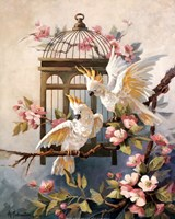 Cockatoo And Blossoms Fine Art Print