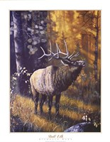 "22"" x 28"" Moose Pictures"