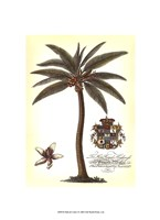 "Palm and Crest I by Mali Nave - 10"" x 13"" - $10.49"