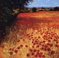 Field Of Red And Gold Fine Art Print