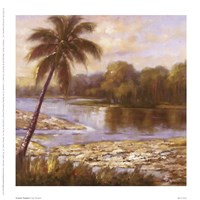 "7"" x 7"" Tropical Pictures"