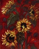 """Sunflowers I by Shari White - 22"""" x 28"""", FulcrumGallery.com brand"""