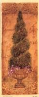 "Italian Cypress by Shari White - 4"" x 10"""