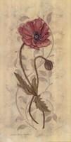 """Poppies I by Stephanie Marrott - 12"""" x 24"""""""