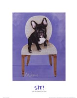 "Lulu The French Bulldog by Carol Dillon - 16"" x 20"""