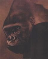Gorilla Grande Fine Art Print