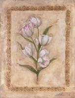 Flores Blancos l Fine Art Print