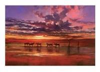African Sunset Fine Art Print