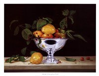 "Still Life In Silver by Patrick Farrell - 26"" x 20"""
