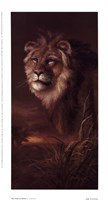 """The Pride Of Africa by James Lee - 5"""" x 9"""""""