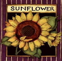 "Sunflower Seed Packet by Susan Winget - 8"" x 8"""