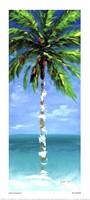 Coastal Palm III Fine Art Print