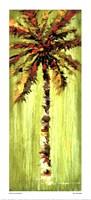 Coastal Palm VI Fine Art Print