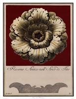 Rosone Antico III Fine Art Print