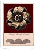 Rosone Antico I Framed Print