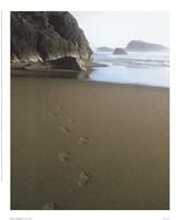 """Ocean Footprints by Mali Nave - 9"""" x 11"""""""