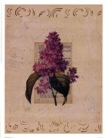 Garden Botanical l Fine Art Print