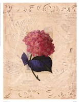 Garden Botanical ll Fine Art Print
