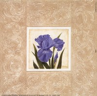"Iris by Gloria Eriksen - 6"" x 6"""