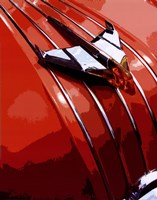 Tail Fins And Two Tones V Fine Art Print