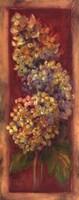 "Hydrangeas On Red I by Shari White - 8"" x 20"""