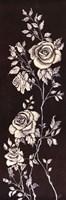 Ivory Roses II Fine Art Print