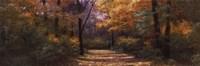 Autumn Road Panel Fine Art Print