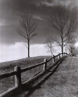 """Fences And Trees, Empire, Michigan by Monte Nagler - 8"""" x 10"""""""