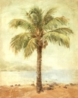 Mirage Palm II Fine Art Print