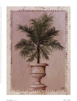 Palm Appeal II Fine Art Print
