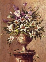 Floral Expressions ll Fine Art Print