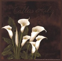 Midnight Calla Lily Framed Print
