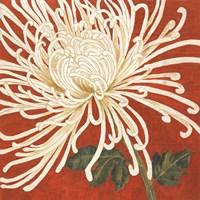 Spider Mum II Fine Art Print
