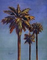 """Santa Rita Palms I by Paul Brent - 16"""" x 20"""""""