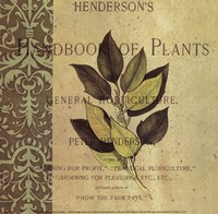 Botany Principles I Framed Print