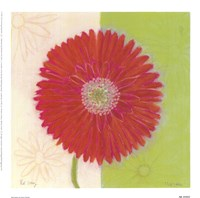 "Red Daisy by Dona Turner - 9"" x 9"""