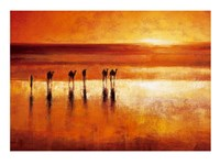 Camel Crossing Fine Art Print