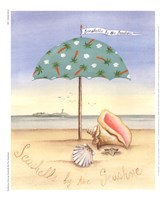 Seashells By The Seashore Framed Print