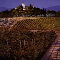 Vines Fine Art Print