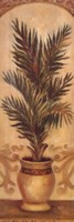 "Tuscan Palm I by Shari White - 12"" x 36"" - $14.49"