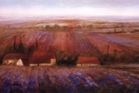 "Sense Of Lavender by Ken Hildrew - 36"" x 24"""