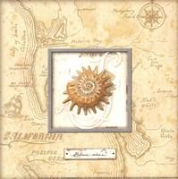 """Sea Treasure III - Mini by Charlene Audrey - 8"""" x 8"""" - $9.99"""