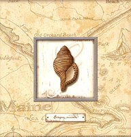"Sea Treasure IV - Mini by Charlene Audrey - 8"" x 8"""