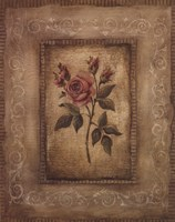 Savin Rose - Mini Fine Art Print