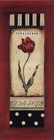 "8"" x 20"" Red Tulip Pictures"