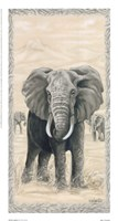 African Legend I Fine Art Print