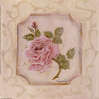Rose In Season l Framed Print