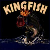 Kingfish Fine Art Print